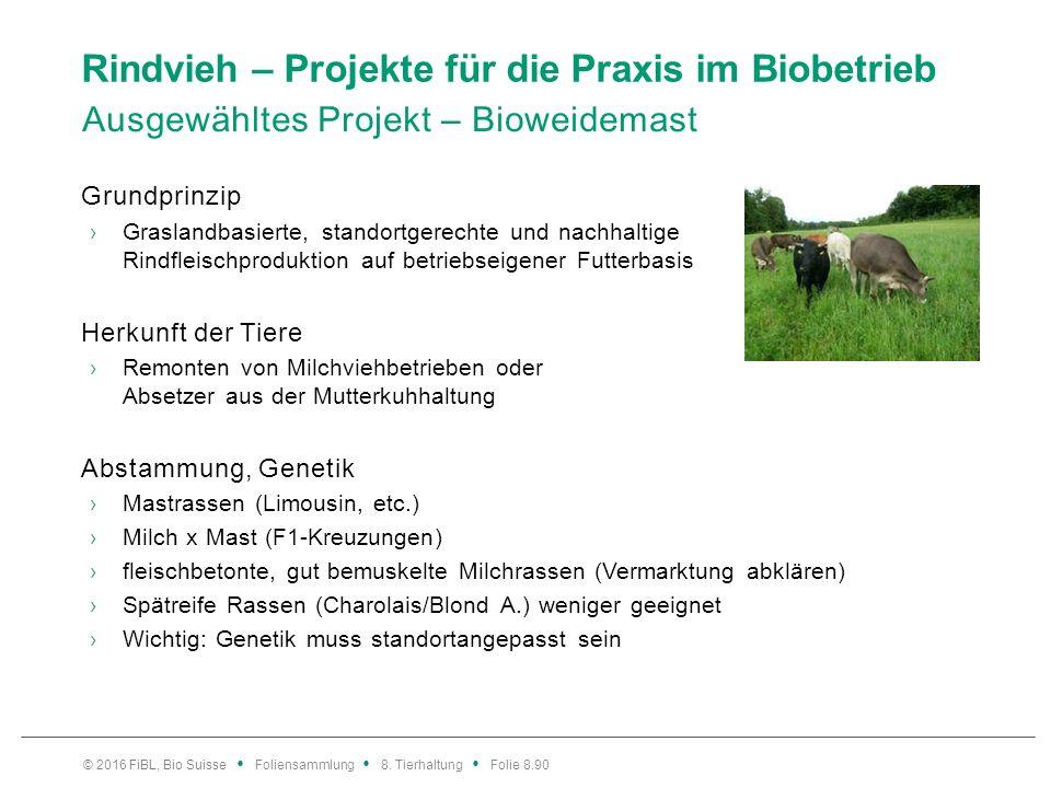 Rindvieh – Projekte für die Praxis im Biobetrieb Ausgewähltes Projekt – Bioweidemast Grundprinzip ›Graslandbasierte, standortgerechte und nachhaltige