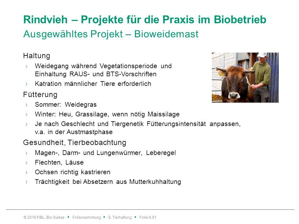 Rindvieh – Projekte für die Praxis im Biobetrieb Ausgewähltes Projekt – Bioweidemast Haltung ›Weidegang während Vegetationsperiode und Einhaltung RAUS