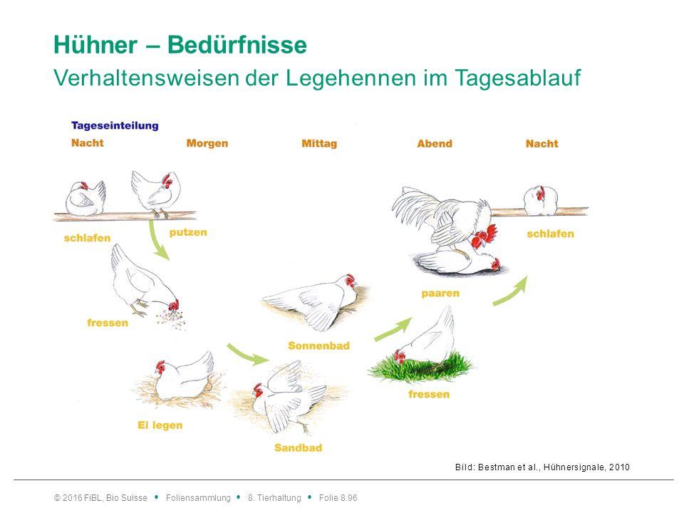 Hühner – Bedürfnisse Verhaltensweisen der Legehennen im Tagesablauf Bild: Bestman et al., Hühnersignale, 2010 © 2016 FiBL, Bio Suisse Foliensammlung 8