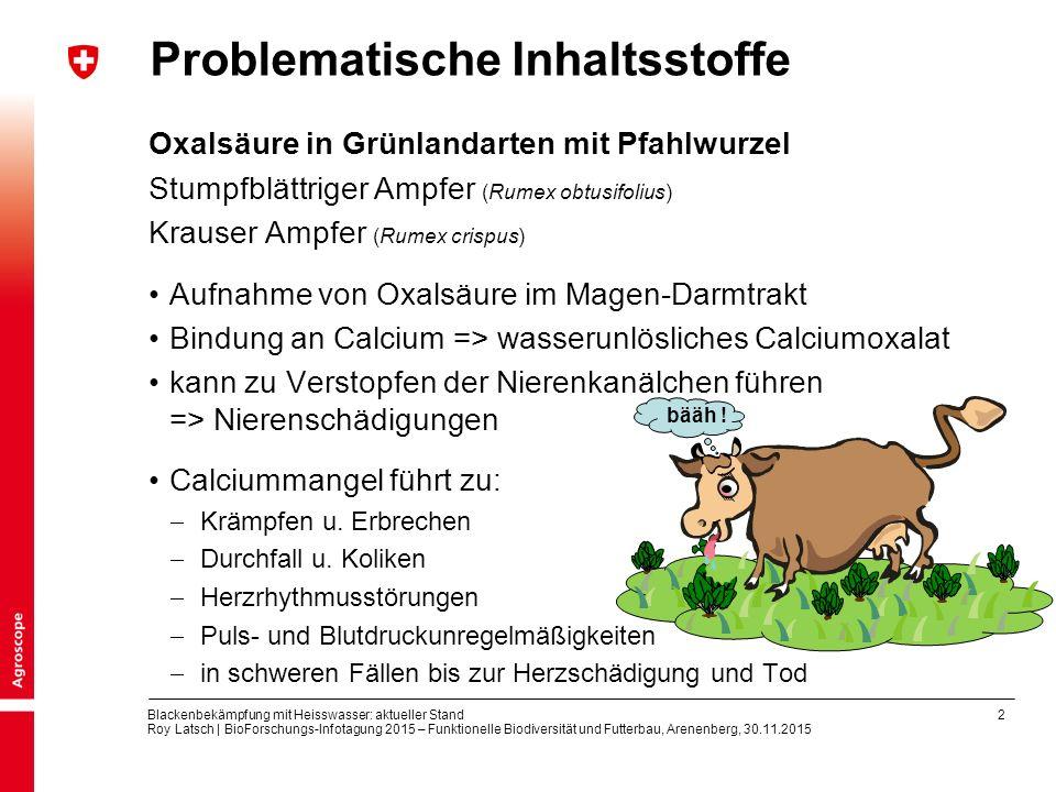 2 Blackenbekämpfung mit Heisswasser: aktueller Stand Roy Latsch | BioForschungs-Infotagung 2015 – Funktionelle Biodiversität und Futterbau, Arenenberg, 30.11.2015 Problematische Inhaltsstoffe Oxalsäure in Grünlandarten mit Pfahlwurzel Stumpfblättriger Ampfer (Rumex obtusifolius) Krauser Ampfer (Rumex crispus) Aufnahme von Oxalsäure im Magen-Darmtrakt Bindung an Calcium => wasserunlösliches Calciumoxalat kann zu Verstopfen der Nierenkanälchen führen => Nierenschädigungen Calciummangel führt zu:  Krämpfen u.