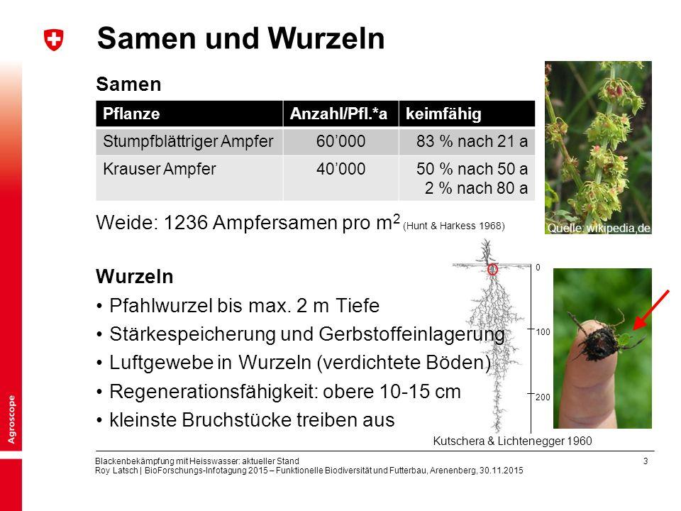 3 Blackenbekämpfung mit Heisswasser: aktueller Stand Roy Latsch | BioForschungs-Infotagung 2015 – Funktionelle Biodiversität und Futterbau, Arenenberg