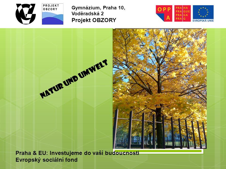 Praha & EU: Investujeme do vaší budoucnosti Evropský sociální fond Gymnázium, Praha 10, Voděradská 2 Projekt OBZORY NATUR UND UMWELT