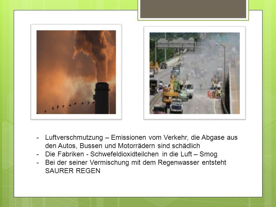 -Luftverschmutzung – Emissionen vom Verkehr, die Abgase aus den Autos, Bussen und Motorrädern sind schädlich -Die Fabriken - Schwefeldioxidteilchen in die Luft – Smog -Bei der seiner Vermischung mit dem Regenwasser entsteht SAURER REGEN