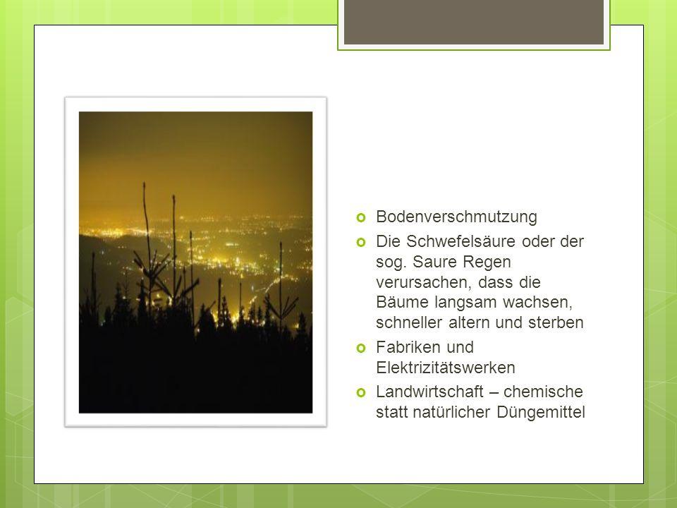  Bodenverschmutzung  Die Schwefelsäure oder der sog.