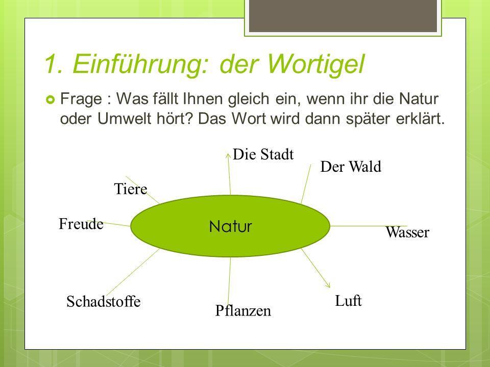 1. Einführung: der Wortigel  Frage : Was fällt Ihnen gleich ein, wenn ihr die Natur oder Umwelt hört? Das Wort wird dann später erklärt. Natur Tiere