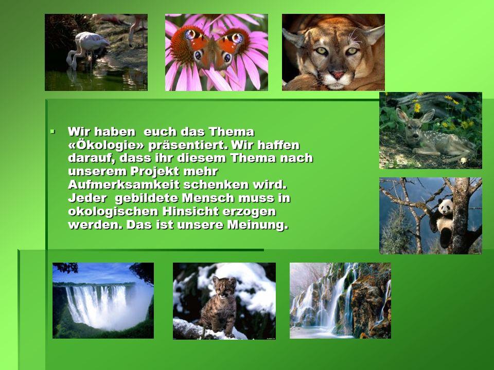  Wir haben euch das Thema «Ökologie» präsentiert. Wir haffen darauf, dass ihr diesem Thema nach unserem Projekt mehr Aufmerksamkeit schenken wird. Je