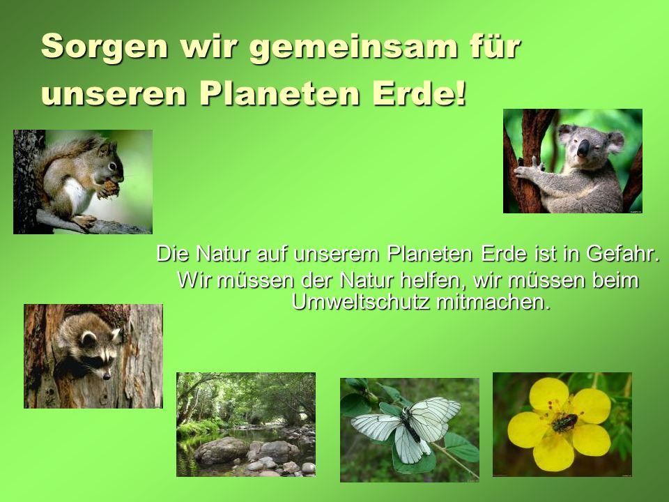 Sorgen wir gemeinsam für unseren Planeten Erde! Die Natur auf unserem Planeten Erde ist in Gefahr. Wir müssen der Natur helfen, wir müssen beim Umwelt