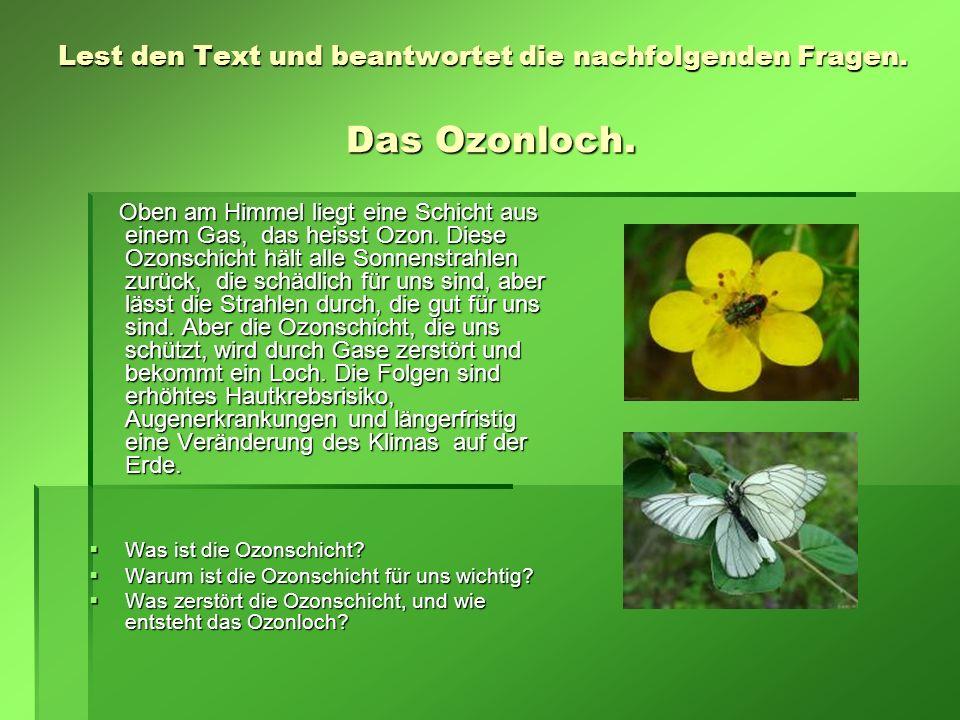 Lest den Text und beantwortet die nachfolgenden Fragen. Das Ozonloch. Oben am Himmel liegt eine Schicht aus einem Gas, das heisst Ozon. Diese Ozonschi
