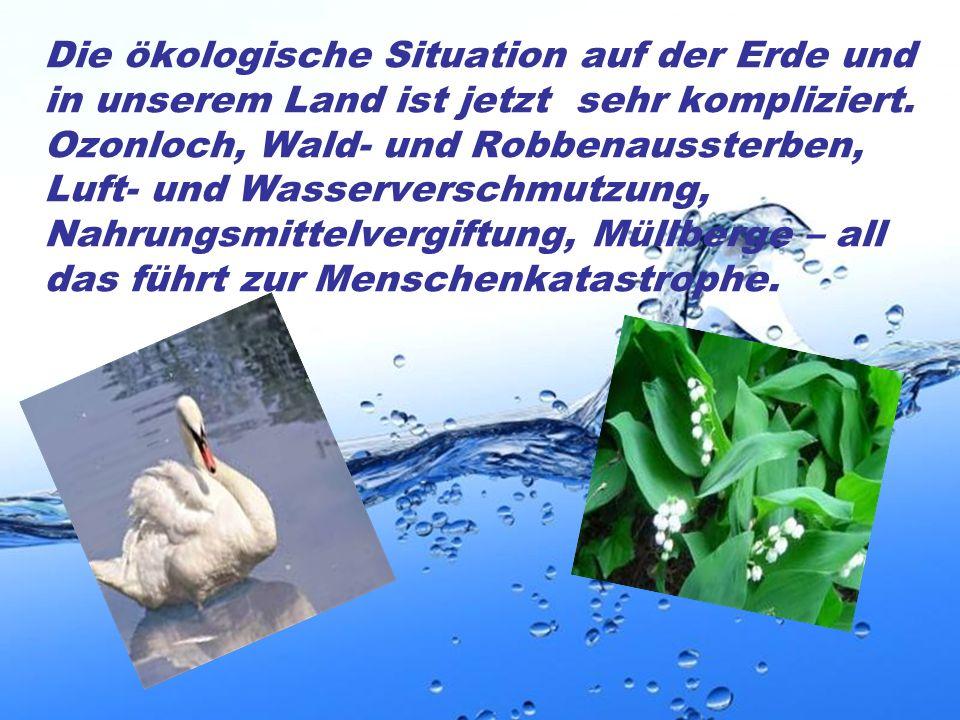 Page 4 Die ökologische Situation auf der Erde und in unserem Land ist jetzt sehr kompliziert. Ozonloch, Wald- und Robbenaussterben, Luft- und Wasserve