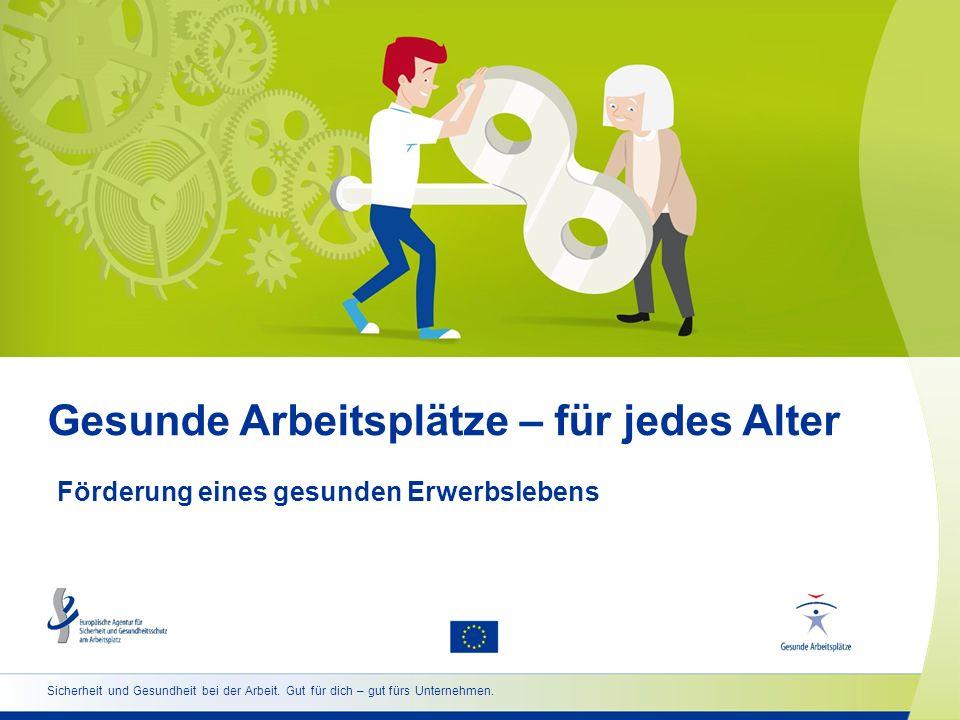 2 www.healthy-workplaces.eu/de Kurzüberblick über die Kampagne  Koordination durch die Europäische Agentur für Sicherheit und Gesundheitsschutz am Arbeitsplatz (EU-OSHA)  Umsetzung in über 30 Ländern  Unterstützt durch ein Netzwerk unterschiedlicher Partner: nationale Focal Points offizielle Kampagnenpartner europäische Sozialpartner Medienpartner Enterprise Europe Network Organe und Einrichtungen der EU andere EU-Agenturen