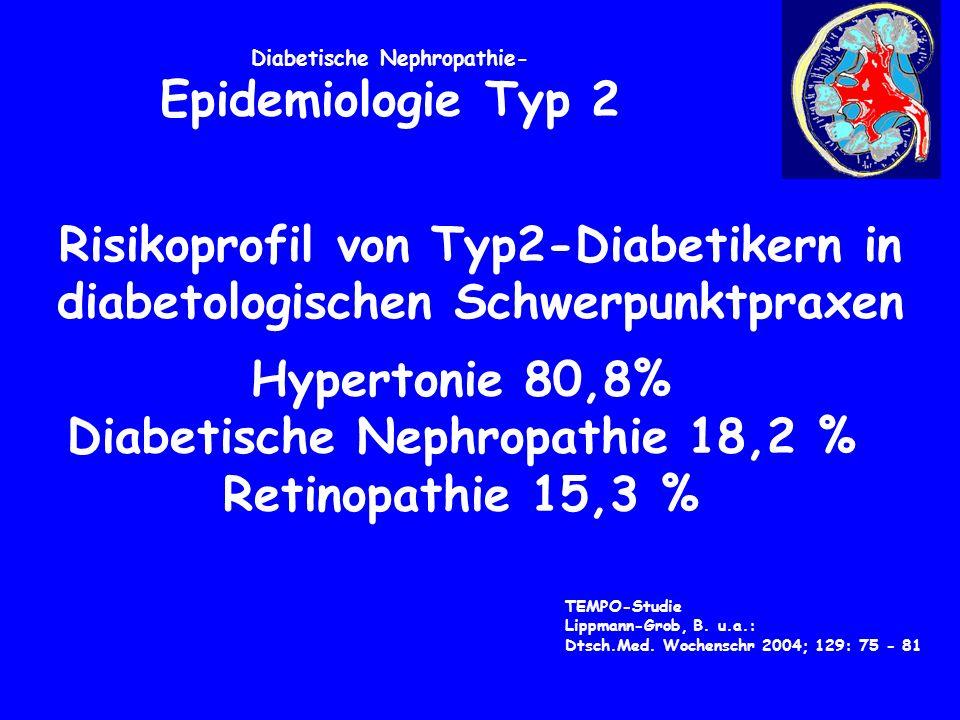 Diabetische Nephropathie- Epidemiologie Typ 2 TEMPO-Studie Lippmann-Grob, B.