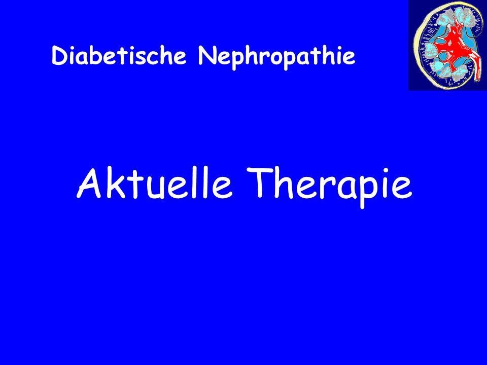 Aktuelle Therapie Diabetische Nephropathie