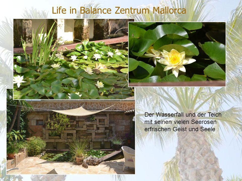 Life in Balance Zentrum Mallorca Der Wasserfall und der Teich mit seinen vielen Seerosen erfrischen Geist und Seele