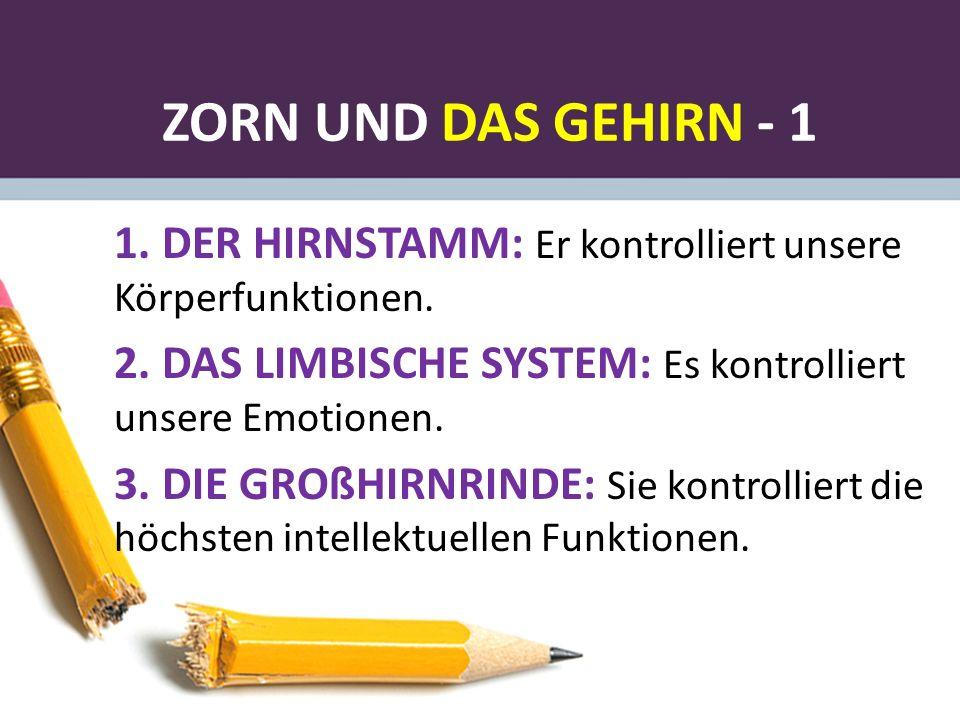 ZORN UND DAS GEHIRN - 1 1. DER HIRNSTAMM: Er kontrolliert unsere Körperfunktionen. 2.DAS LIMBISCHE SYSTEM: Es kontrolliert unsere Emotionen. 3.DIE GRO
