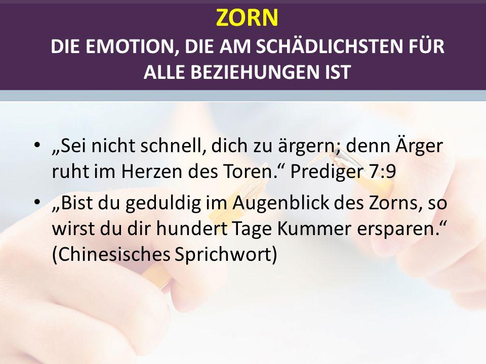 ZORN UND DAS GEHIRN - 1 1.DER HIRNSTAMM: Er kontrolliert unsere Körperfunktionen.