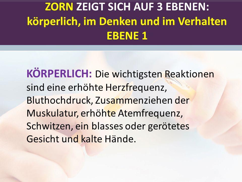 ZORN ZEIGT SICH AUF 3 EBENEN: körperlich, im Denken und im Verhalten EBENE 1 KÖRPERLICH: Die wichtigsten Reaktionen sind eine erhöhte Herzfrequenz, Bl