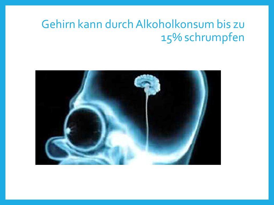 Gehirn kann durch Alkoholkonsum bis zu 15% schrumpfen
