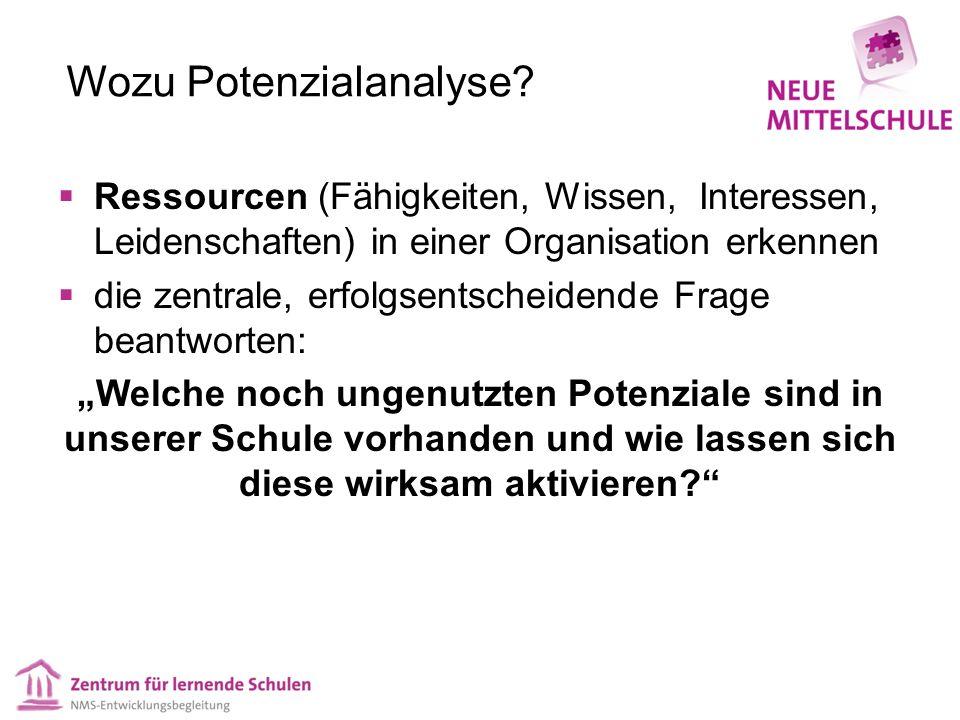 Wozu Potenzialanalyse.