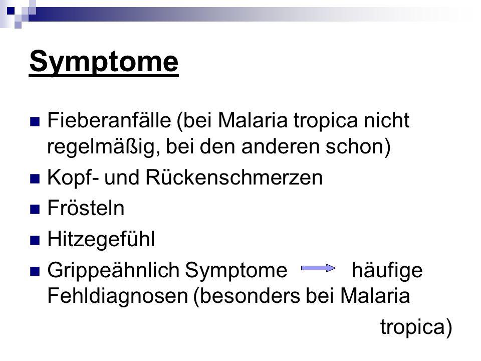 Symptome Fieberanfälle (bei Malaria tropica nicht regelmäßig, bei den anderen schon) Kopf- und Rückenschmerzen Frösteln Hitzegefühl Grippeähnlich Symptome häufige Fehldiagnosen (besonders bei Malaria tropica)