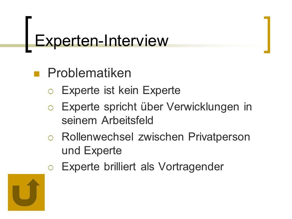 Problematiken  Experte ist kein Experte  Experte spricht über Verwicklungen in seinem Arbeitsfeld  Rollenwechsel zwischen Privatperson und Experte  Experte brilliert als Vortragender Experten-Interview