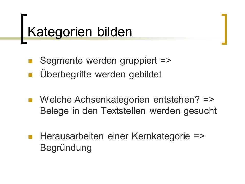 Kategorien bilden Segmente werden gruppiert => Überbegriffe werden gebildet Welche Achsenkategorien entstehen.