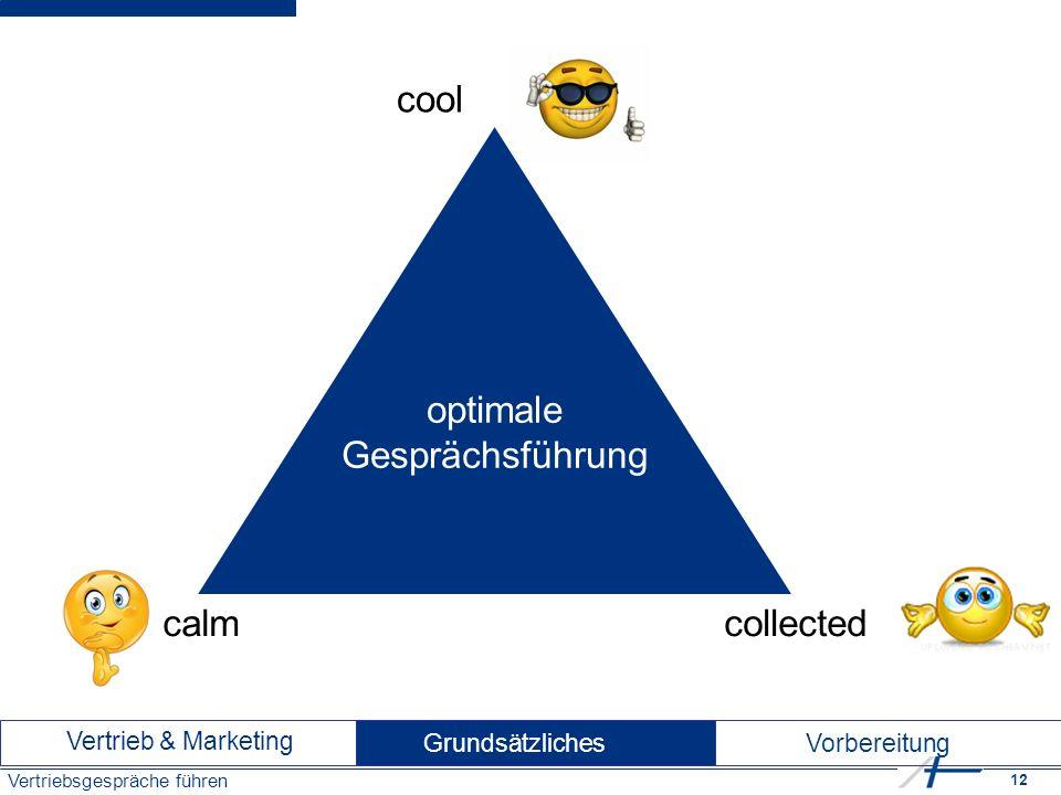 12 Vertriebsgespräche führen cool collectedcalm optimale Gesprächsführung Vertrieb & Marketing Vorbereitung Grundsätzliches