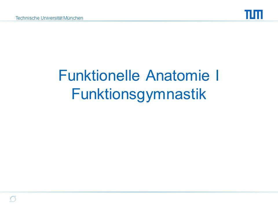Technische Universität München Funktionelle Anatomie I Funktionsgymnastik