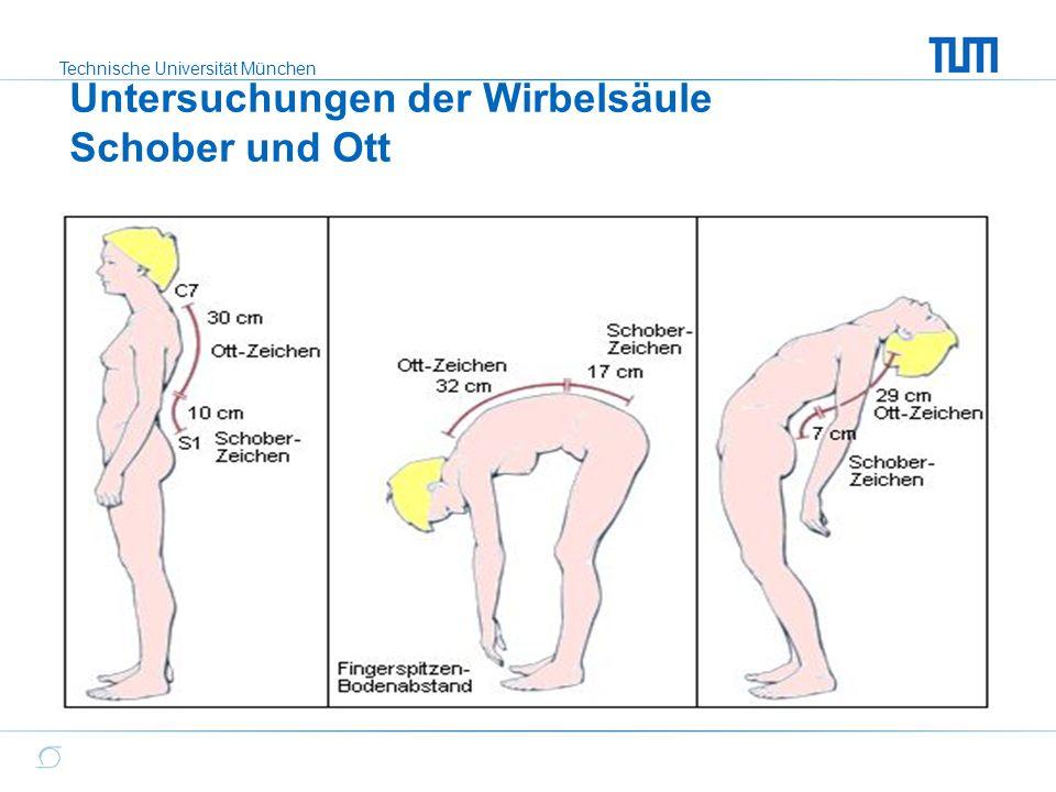 Technische Universität München Untersuchungen der Wirbelsäule Schober und Ott