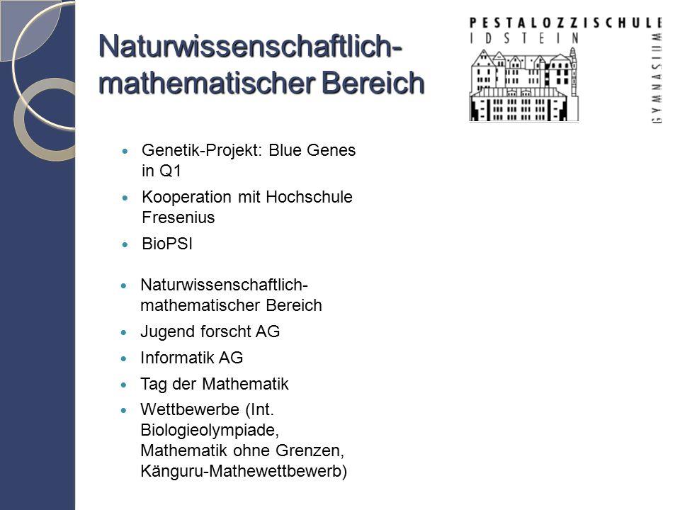 Naturwissenschaftlich- mathematischer Bereich Jugend forscht AG Informatik AG Tag der Mathematik Wettbewerbe (Int.