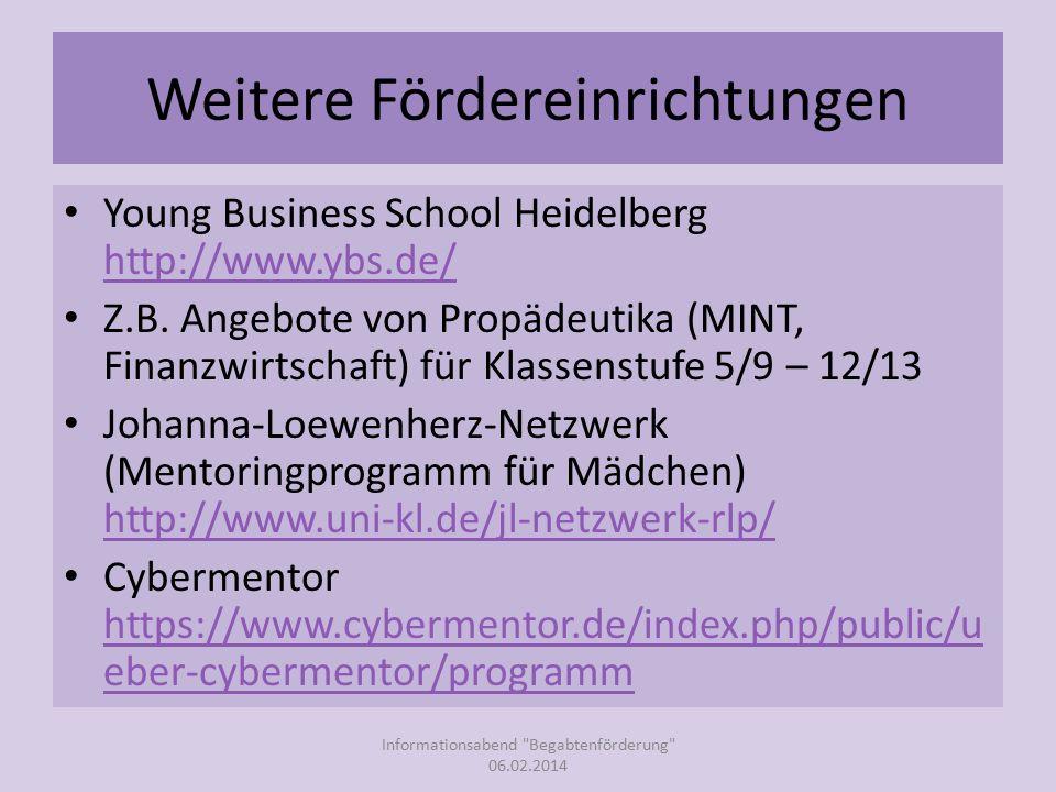 Weitere Fördereinrichtungen Young Business School Heidelberg http://www.ybs.de/ http://www.ybs.de/ Z.B.