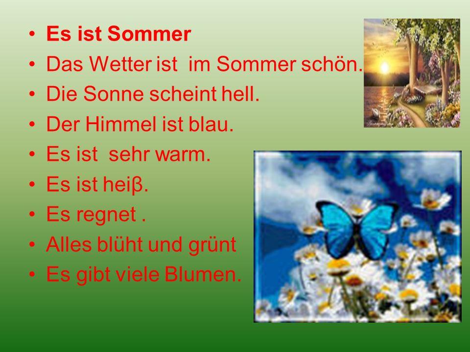 Es ist Sommer Das Wetter ist im Sommer schön. Die Sonne scheint hell. Der Himmel ist blau. Es ist sehr warm. Es ist heiβ. Es regnet. Alles blüht und g