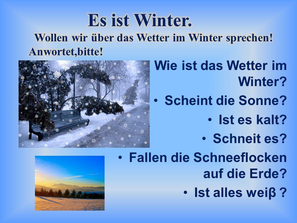 Wie ist das Wetter im Winter? Scheint die Sonne? Ist es kalt? Schneit es? Fallen die Schneeflocken auf die Erde? Ist alles weiβ ?