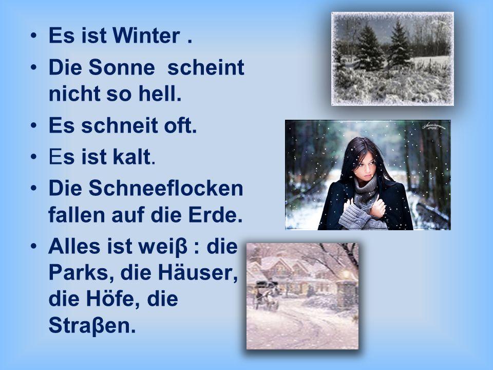 Es ist Winter. Die Sonne scheint nicht so hell. Es schneit oft. Es ist kalt. Die Schneeflocken fallen auf die Erde. Alles ist weiβ : die Parks, die Hä