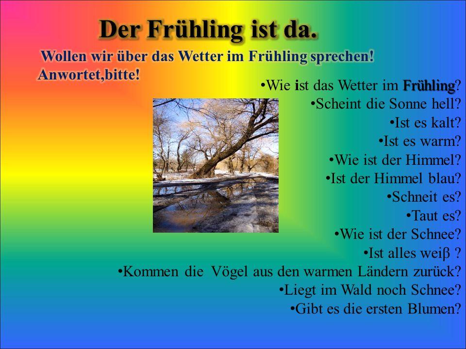 Frühling Wie ist das Wetter im Frühling? Scheint die Sonne hell? Ist es kalt? Ist es warm? Wie ist der Himmel? Ist der Himmel blau? Schneit es? Taut e