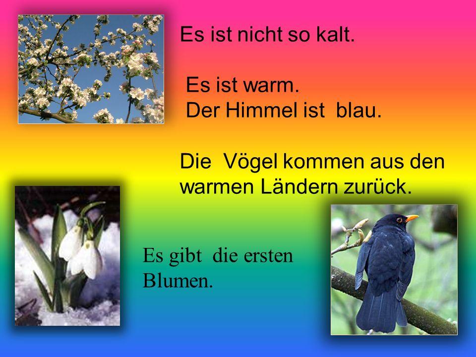 Es ist nicht so kalt. Es ist warm. Der Himmel ist blau. Die Vögel kommen aus den warmen Ländern zurück. Es gibt die ersten Blumen.