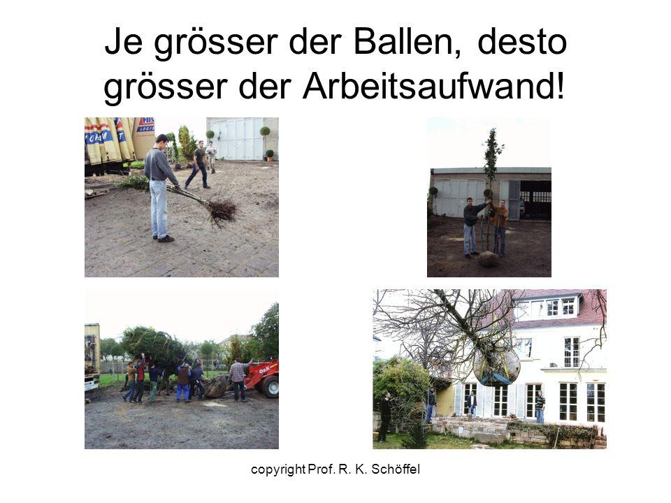 Je grösser der Ballen, desto grösser der Arbeitsaufwand! copyright Prof. R. K. Schöffel