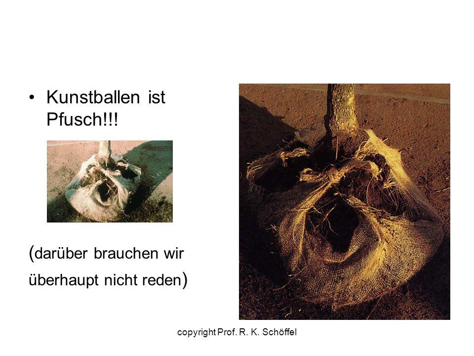 Kunstballen ist Pfusch!!! ( darüber brauchen wir überhaupt nicht reden ) copyright Prof. R. K. Schöffel