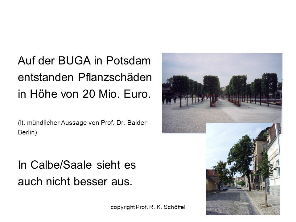Auf der BUGA in Potsdam entstanden Pflanzschäden in Höhe von 20 Mio. Euro. (lt. mündlicher Aussage von Prof. Dr. Balder – Berlin) In Calbe/Saale sieht
