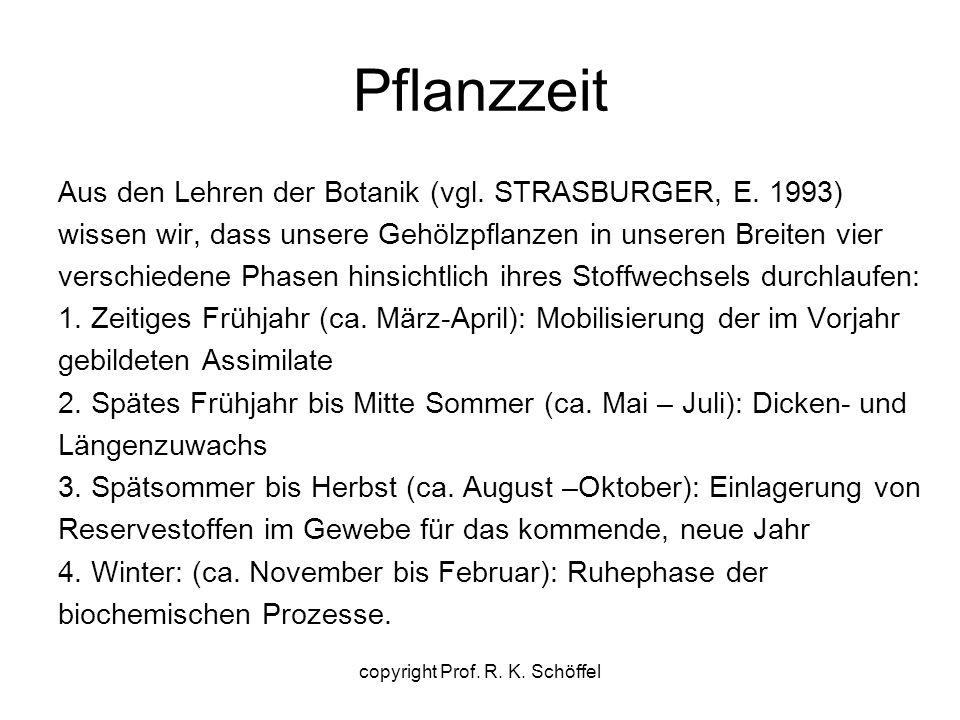 Pflanzzeit Aus den Lehren der Botanik (vgl. STRASBURGER, E.