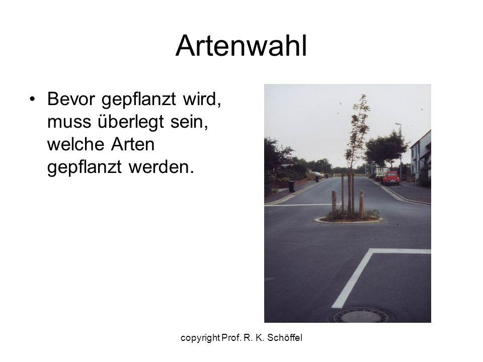 Artenwahl Bevor gepflanzt wird, muss überlegt sein, welche Arten gepflanzt werden. copyright Prof. R. K. Schöffel