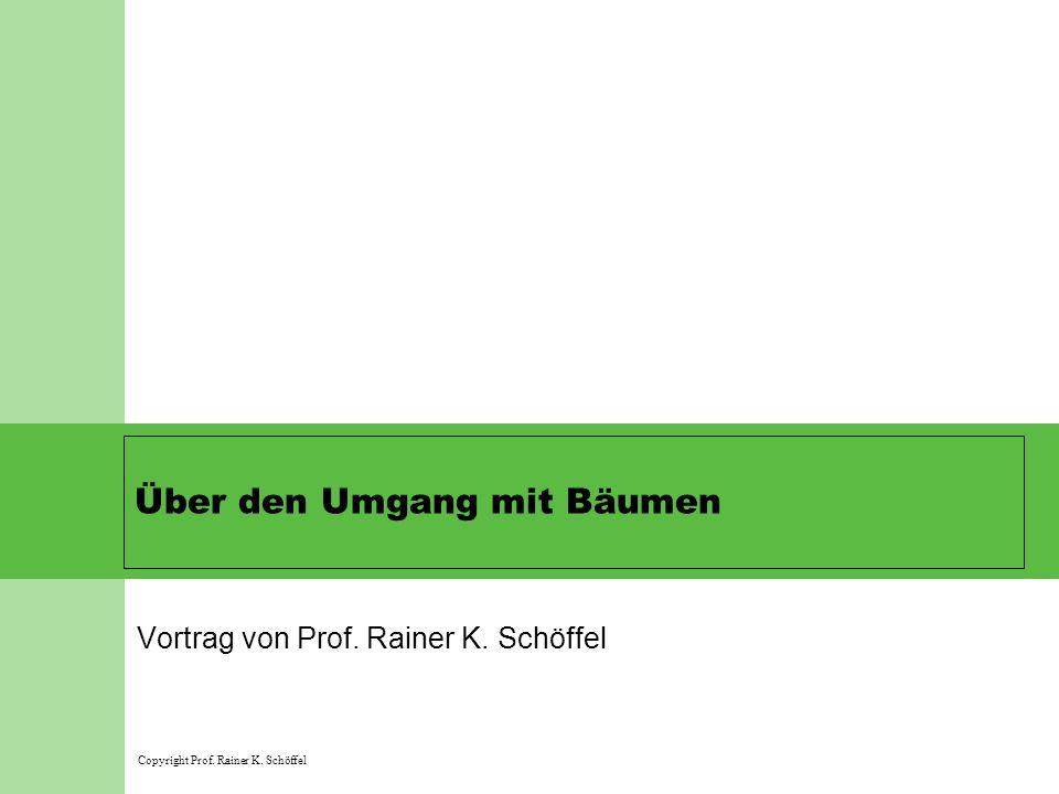 Über den Umgang mit Bäumen Vortrag von Prof. Rainer K. Schöffel Copyright Prof. Rainer K. Schöffel