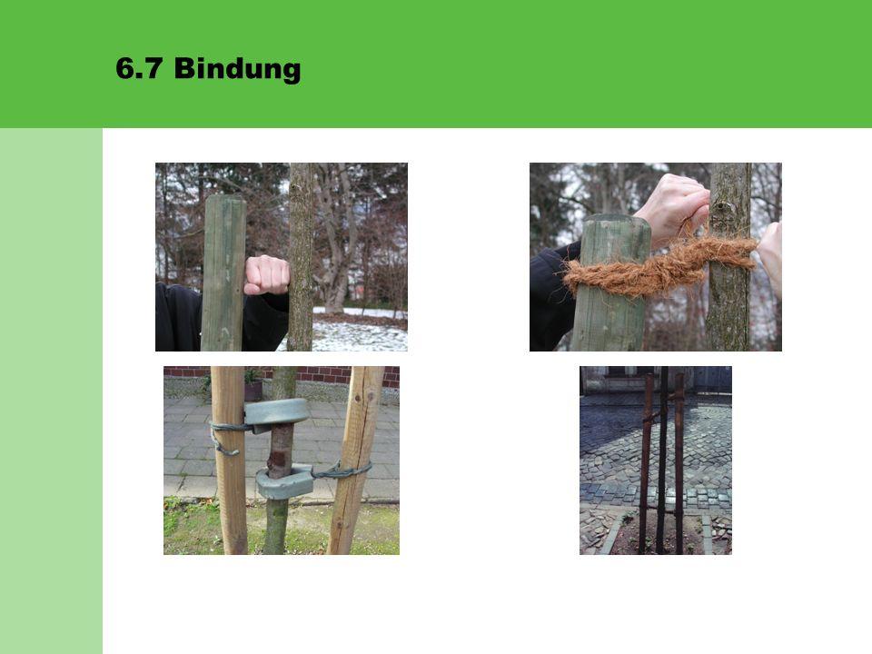 6.8 Angiessen/Wässern Von zentraler Bedeutung ist das Wässern.