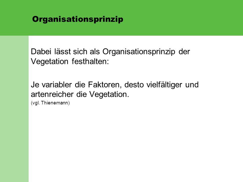 Organisationsprinzip Dabei lässt sich als Organisationsprinzip der Vegetation festhalten: Je variabler die Faktoren, desto vielfältiger und artenreicher die Vegetation.