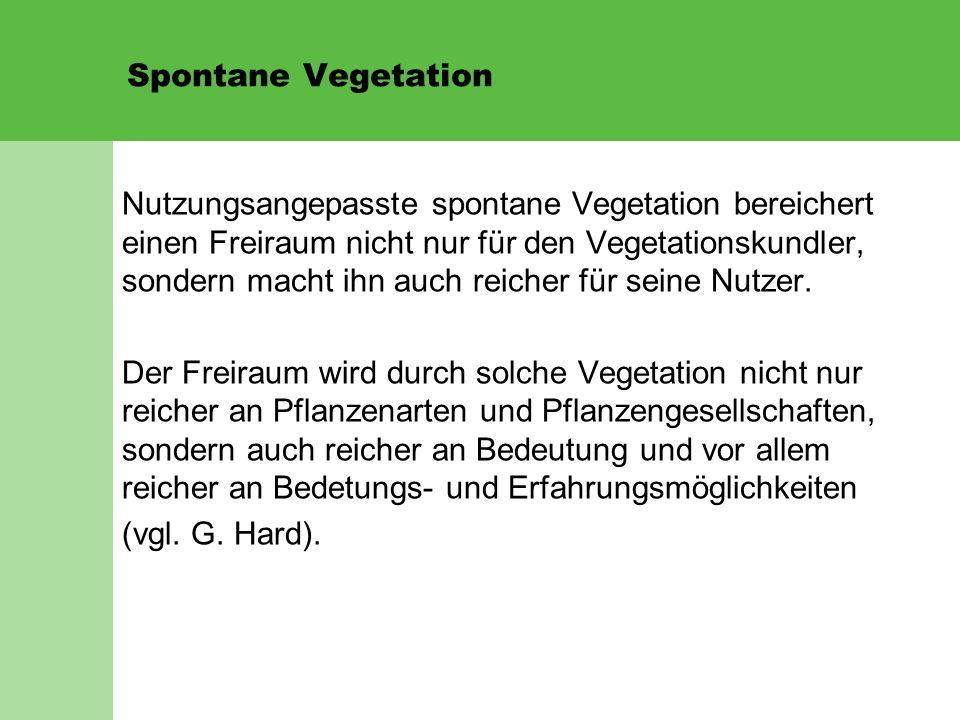 Spontane Vegetation Nutzungsangepasste spontane Vegetation bereichert einen Freiraum nicht nur für den Vegetationskundler, sondern macht ihn auch reicher für seine Nutzer.