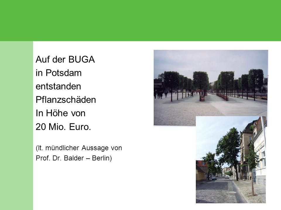 Auf der BUGA in Potsdam entstanden Pflanzschäden In Höhe von 20 Mio. Euro. (lt. mündlicher Aussage von Prof. Dr. Balder – Berlin)