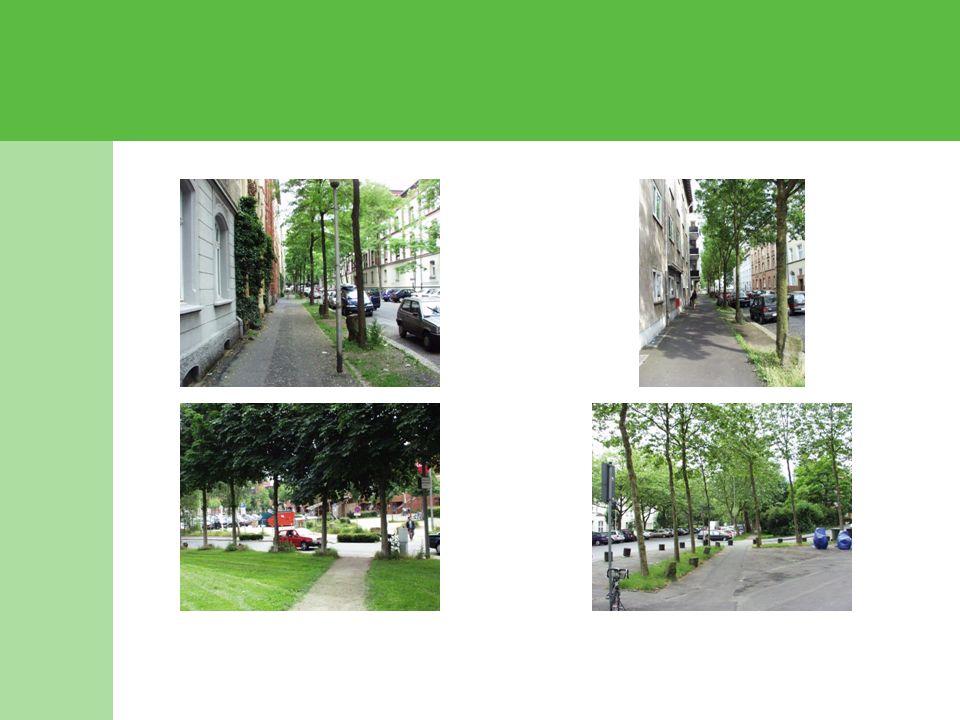 In der Gründerzeit war das Bäume- Pflanzen zum durchgängigen Prinzip der Stadterweiterung erhoben worden.