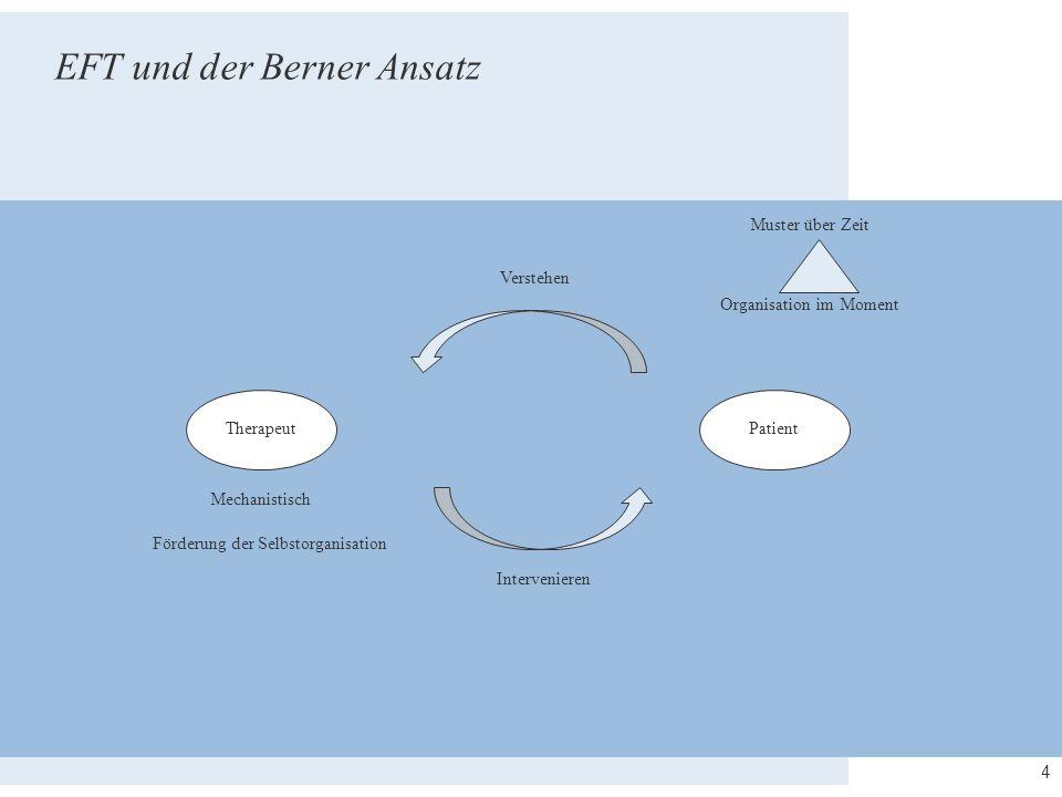 4 TherapeutPatient Muster über Zeit Verstehen Intervenieren Organisation im Moment Mechanistisch Förderung der Selbstorganisation