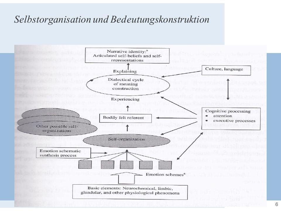 6 Selbstorganisation und Bedeutungskonstruktion