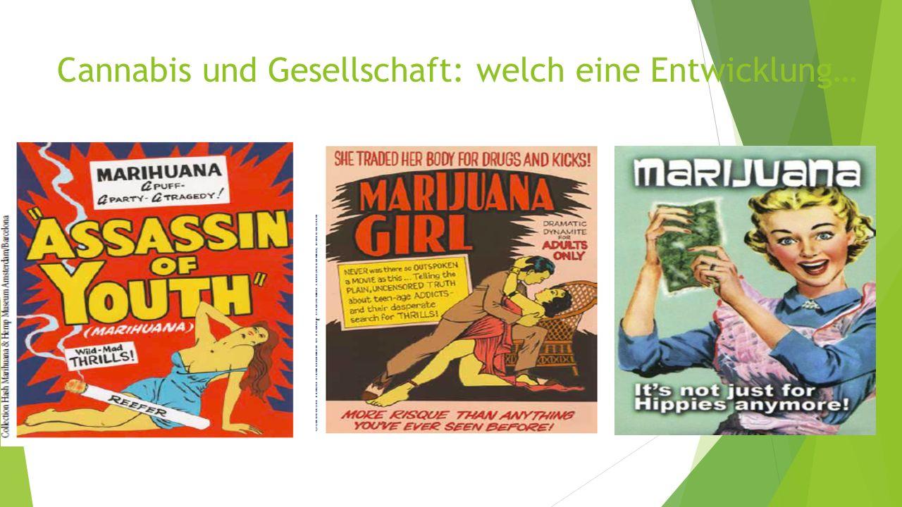 Cannabis und Gesellschaft: welch eine Entwicklung…