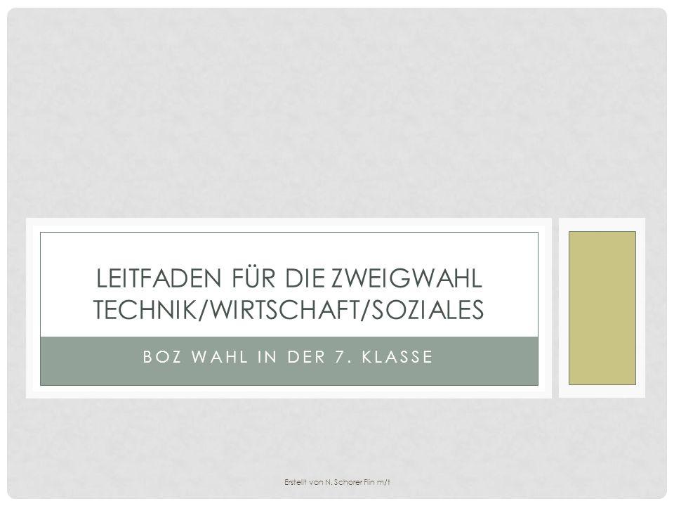 BOZ WAHL IN DER 7. KLASSE LEITFADEN FÜR DIE ZWEIGWAHL TECHNIK/WIRTSCHAFT/SOZIALES Erstellt von N. Schorer Flin m/t